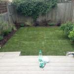 The garden redesign
